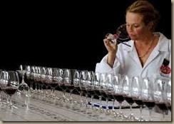 wine judging