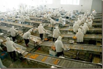 industrial food2