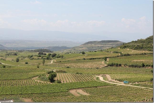 baigorri view