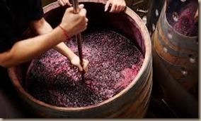 winemaker at work 2