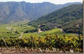 chile wine region