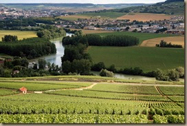 Champagne_Vineyards