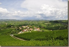 vineyards-3094144__340