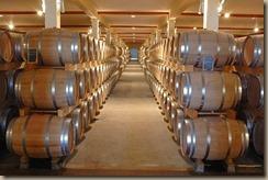 winery-2110737__340
