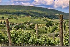 tuscany-2194879_960_720