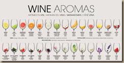 wine aromas