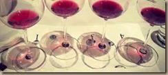 wine evalution