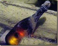 aged champagne