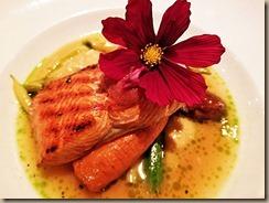 salmon-and-rhubarb-edit
