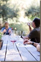 wine-tasting-1952074_960_720