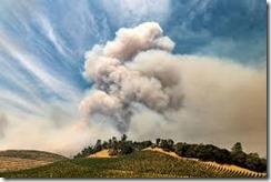 wildfires in wine country