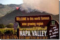 wildfires in vineyard